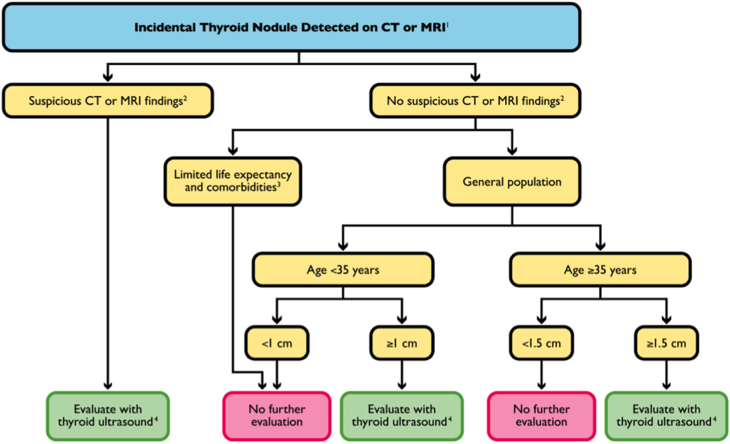 Thyroid Nodule Guidelines