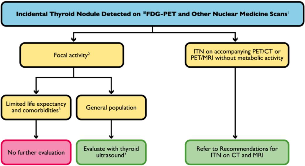 Thyroid Nodule Guidelines